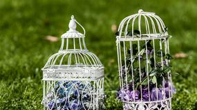 Klatki dla ptaków, jako dekoracja na weselu