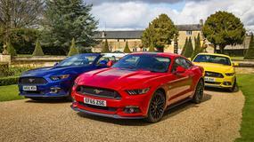 Ford Mustang króluje w Polsce