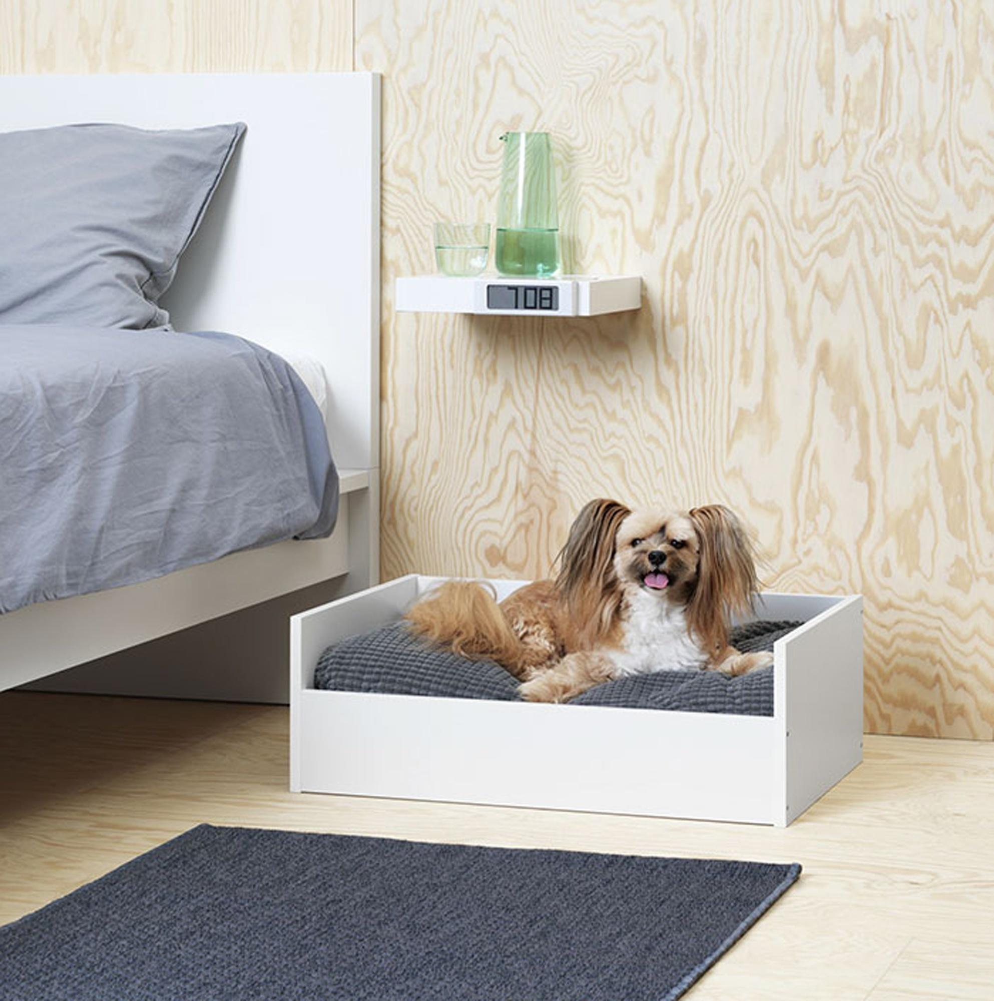 Ikea Meble Dla Zwierząt Kolekcja Gadżetów Podbije Wasze