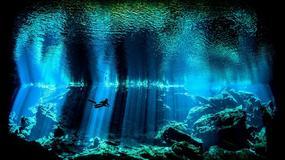 ŽIVOT U PLAVOM Najlepše podvodne fotografije u 2017. godini