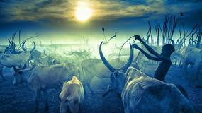 Marcin Kydryński: Afryka to świat cały. Kosmos