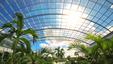 Cały kompleks parku będzie zakryty szklanym rozsuwanym dachem