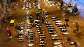 Największy targ rybny na świecie zostanie przeniesiony. Nie obywa się bez sporów