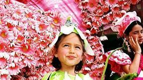 Portugalia - Madera - Kwiatowy Festiwal