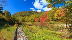 Tōhoku - naturalne piękno Japonii