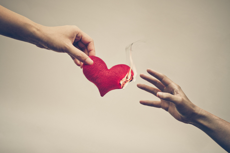 травник картинки где сердце разбивается внимание сами соски