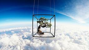 Umetničke bravure Japanca: Lansirao buket cveća u svemir i STVORIO MAGIJU