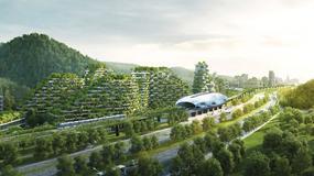 W Chinach wybudują niezwykłe miasto. Wszystko zostanie pokryte roślinnością