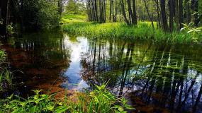 Mało znane miejsca w Polsce na majówkę