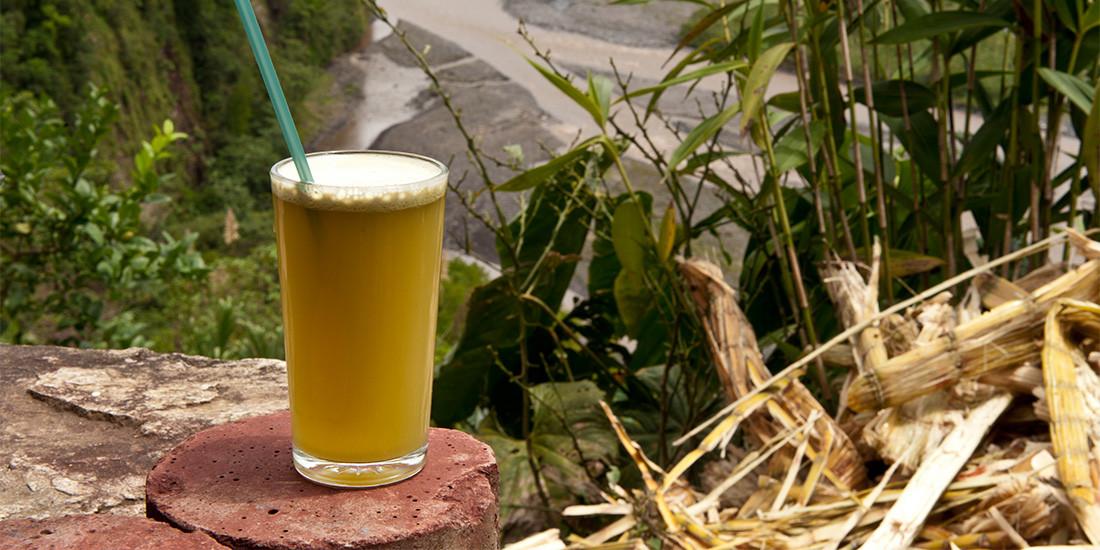 6 surprising health benefits of sugarcane juice - Pulse Nigeria