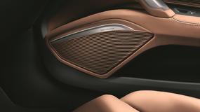 12 głośników i 680 W mocy. Bang & Olufsen w nowym Audi TT Roadster