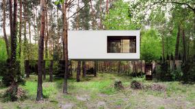 Lustrzany dom z Polski zachwyca cały świat