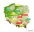 Ranking najwolniejszych polskich miast - zima 2017