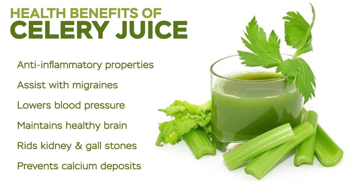 Check out the 5 incredible health benefits of celery juice - Pulse