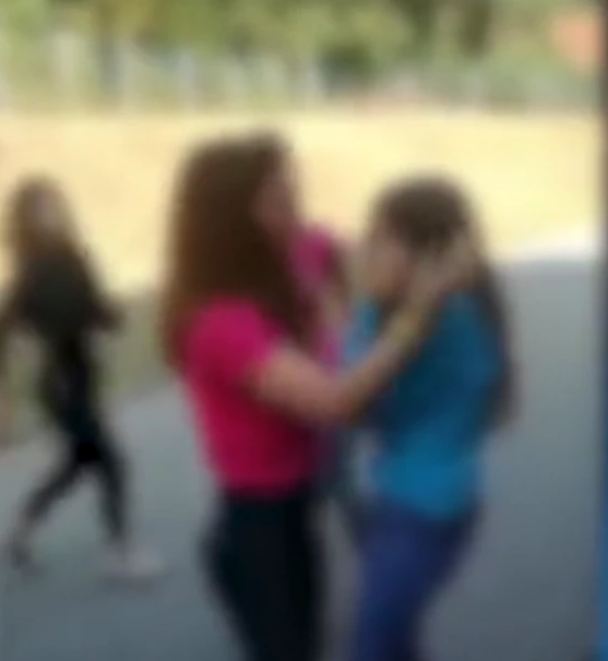 Snimak nasilja brzo se proširio internetom