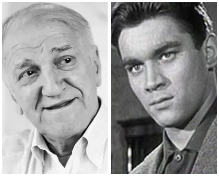 Bili su najbolji prijatelji, a onda GODINAMA NISU RAZGOVARALI: Evo šta je bio uzrok sukoba Bate Živojinovića i Borisa Dvornika!