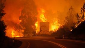 PORTUGAL KAO PAKAO! Stravična vatra progutala najmanje 62 OSOBE, stotine vatrogasaca se bore sa požarom (FOTO)