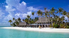 Praca marzeń czeka - rok w podróży za milion dolarów jako ekspert od luksusowych hoteli, ośrodków i restauracji