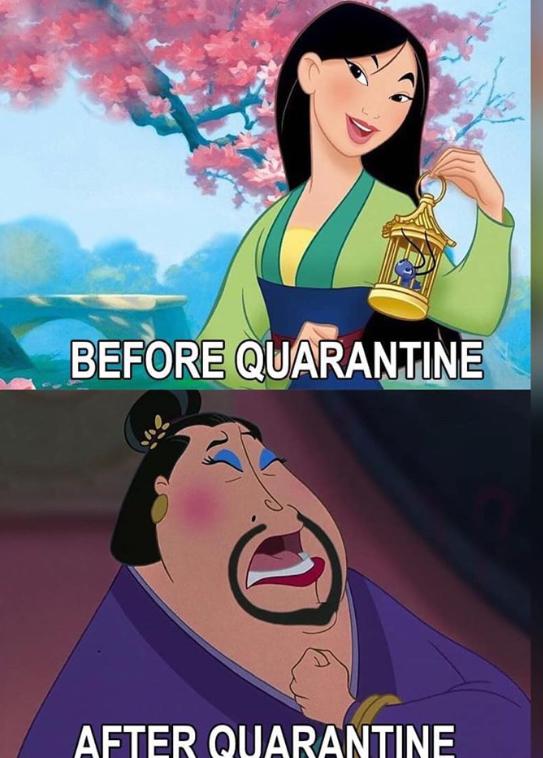 Pre i posle karantina