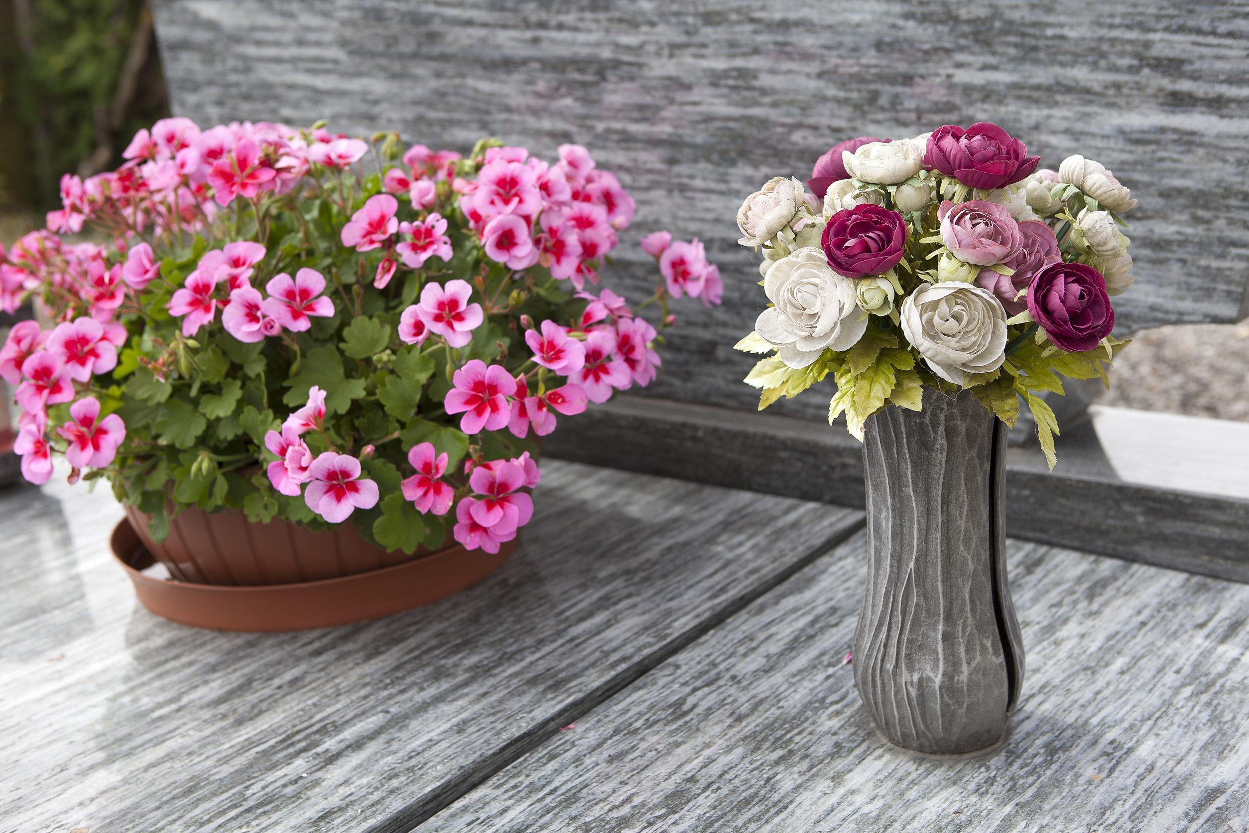 Które Kwiaty Wytrzymają Na Cmentarzu Najdłużej