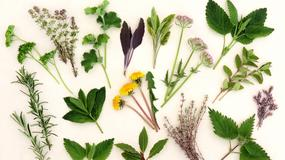 Dodaj sobie wiosennej energii ziołami