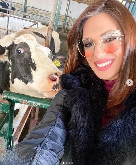 Nina Radulović sa kravom