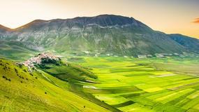 Najpiękniejsze parki narodowe w Europie wg czytelników Guardiana - wśród nich Białowieża