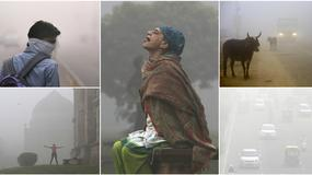ZASTRAŠUJUĆE FOTOGRAFIJE Život u trećem najnaseljenijem gradu na svetu je NEMOGUĆ: Gušimo se, ovo je PLINSKA KOMORA (FOTO)