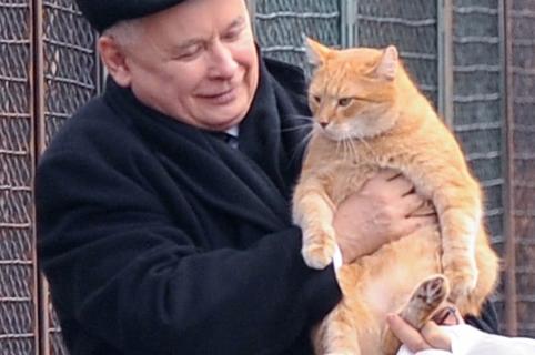 Kaczyński dokarmia cudzego kota