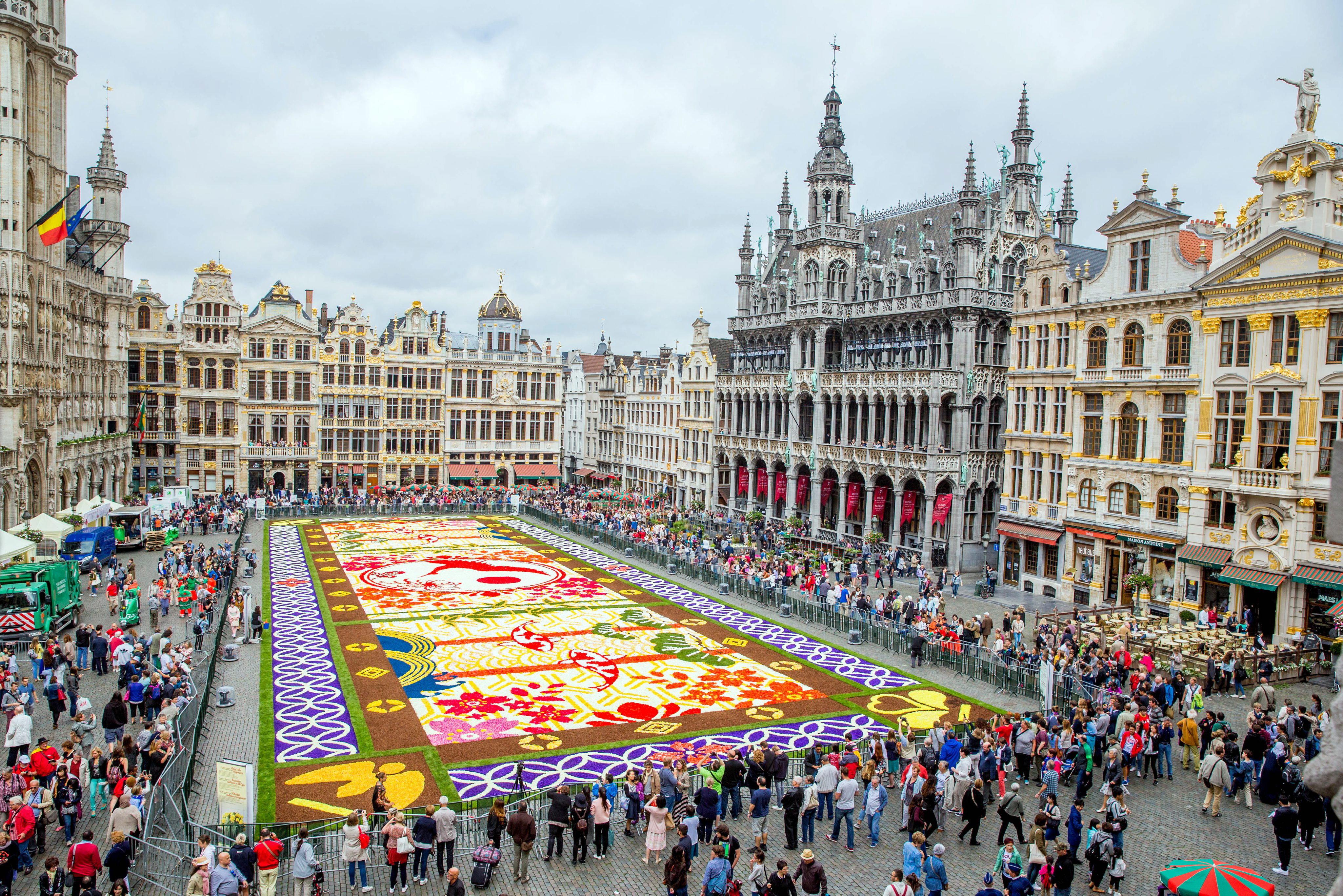 Na Grand Place W Brukseli Po Raz 20 Ułożono Kwiatowy Dywan