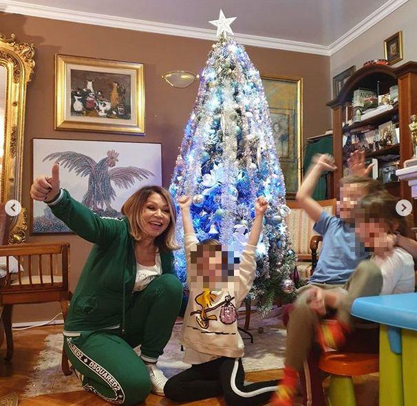 Novogodišnja jelka u domu Nede Ukraden
