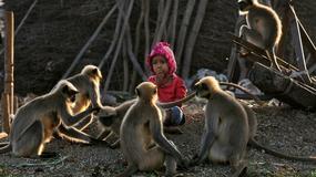 PRAVI MOGLI Ovaj dečak nije odrastao u džungli, a niko ne može da objasni njegovu MISTERIOZNU VEZU sa majmunima (FOTO)