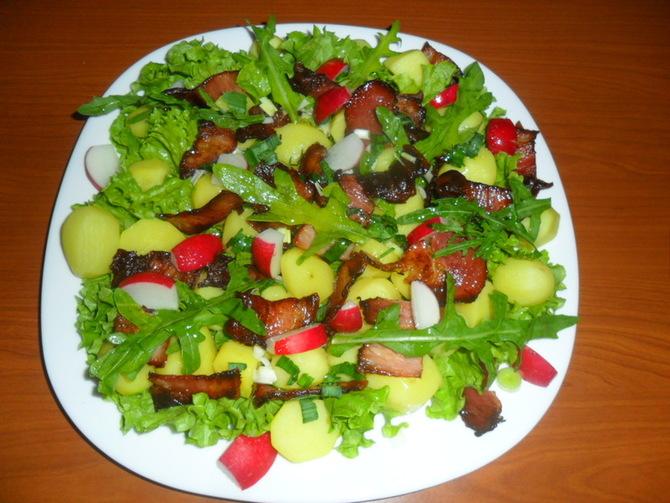 Salata kao kompletan obrok