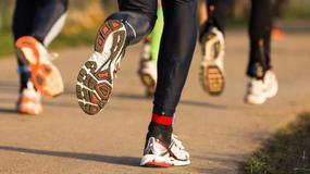 Jak wybrać obuwie do biegania + test wybranych nowości 2014