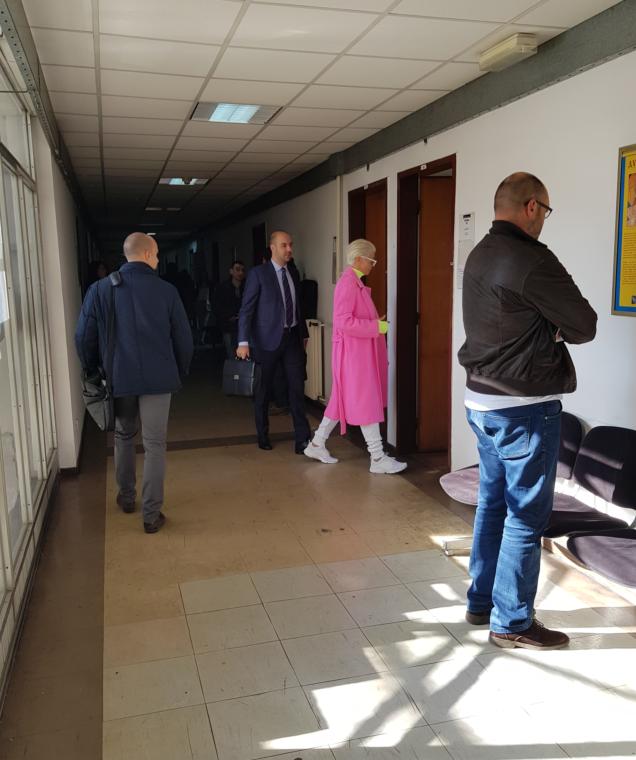 Jelena Karleuša ispred sudnice