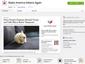 """Chrome Store: """"Make America Kittens Again"""""""