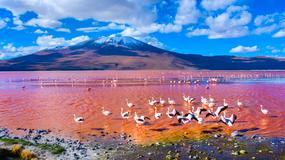 10 najpiękniejszych lagun na świecie