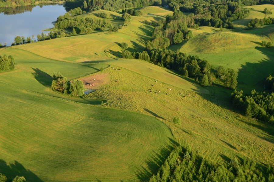 Lot balonem dla dwojga - Biebrzański Park Narodowy