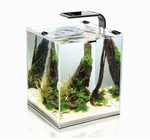 Aquael Akwarium Shrimp 20 250X250X300)