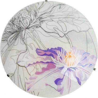 Candellux kinkiet plafon SPRING 40 14-13033 Fioletowy kwiaty