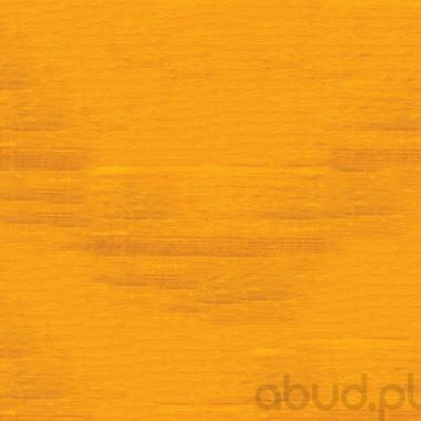 Drewnochron Extra do drewna 2,5L Sosna 5904000005490