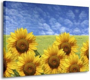 Słoneczniki - Obraz na płótnie