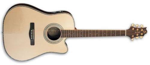 Samick ASDR CE - gitara
