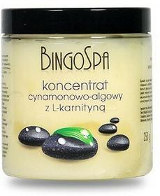 BingoSpa Koncentrat Cynamon Alga z L Karnityną 250g