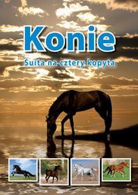 Praca zbiorowa Konie. Suita na cztery kopyta
