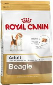Royal Canin Beagle (Medium) 12 kg