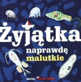Wiktor Oczlikowski Żyjątka naprawdę malutkie