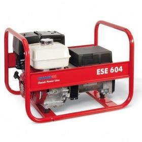 Endress ESE 604 DHS