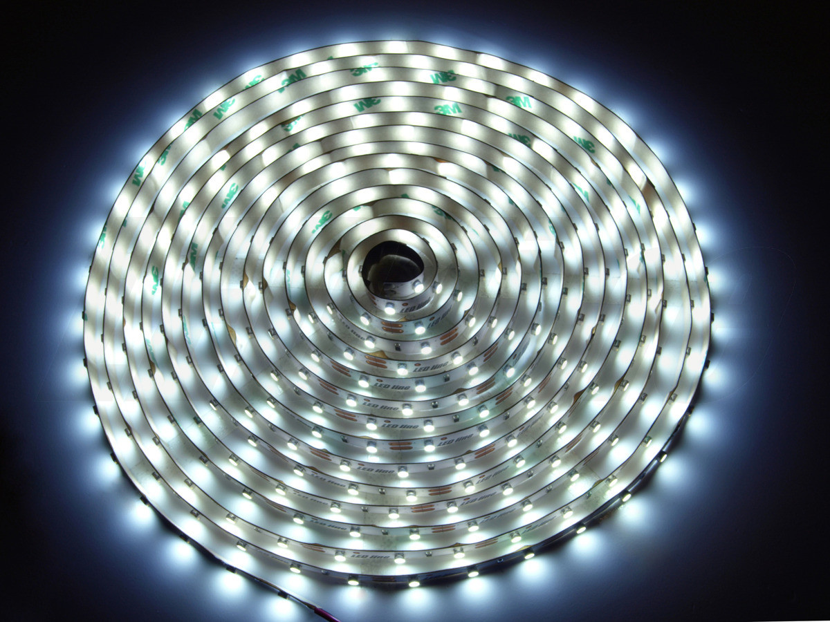 LED Line Taśma 300 SMD 3528 biała zimna w powłoce silikonowej IP65 24026 (240263)