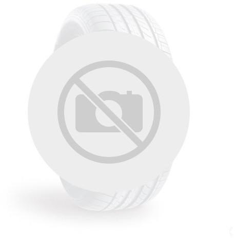 Opinie o Michelin CARGOXBIB HIGH FLOTATION 600/55R26.5 165D